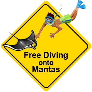 Thread to the Manta Rays: Free Diving