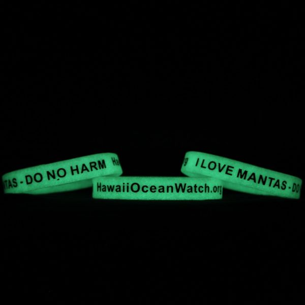 Hawaii Ocean Watch Wristband